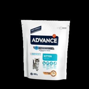10_advance_gatto active defense kitten