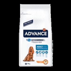 14_advance_cani active defense adult medium